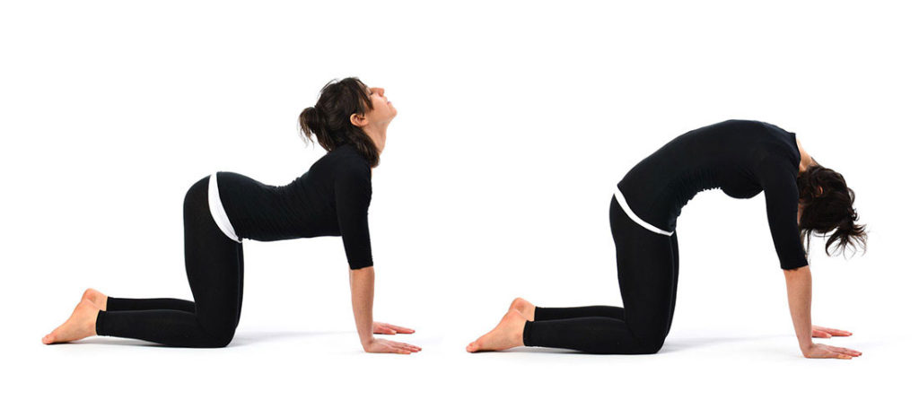girl doing cat cow stretch