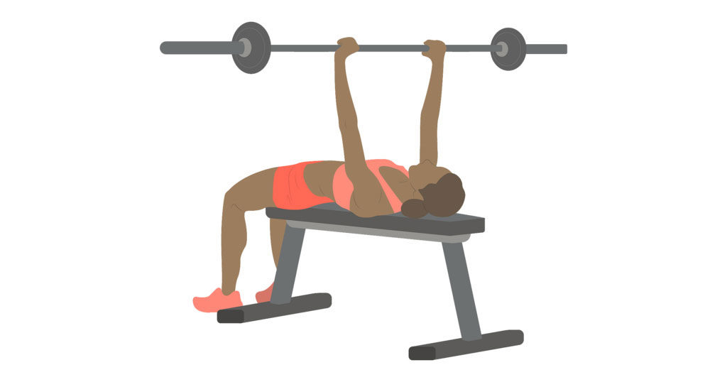 bench press illustration