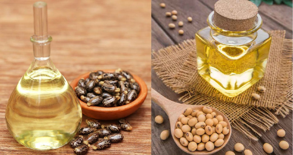 Castor Oil and Soybean Oil
