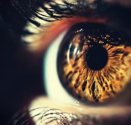Human Eye Iris Close